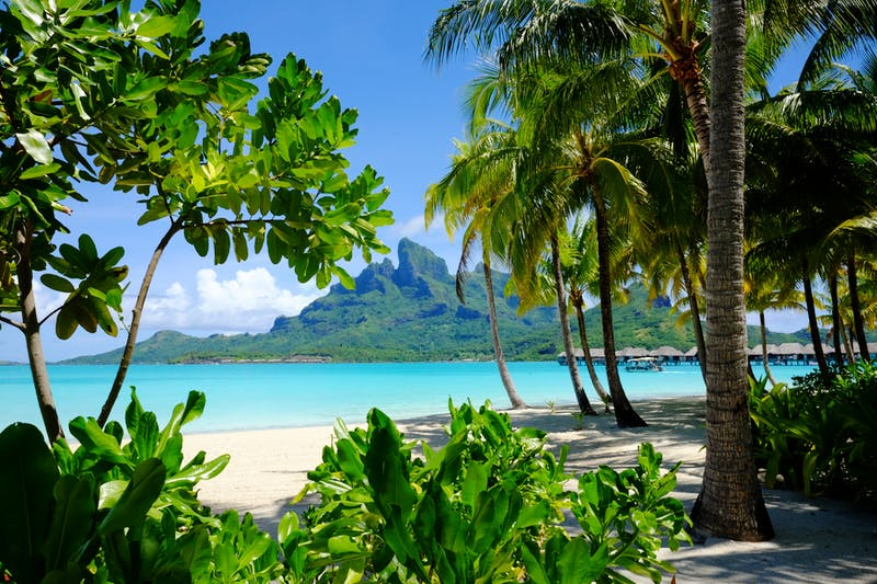 Superyacht charters French Polynesia
